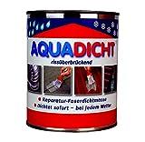 Aqua Dicht transparent - 5 kg Eimer