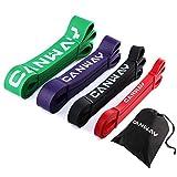 Canway Resistance Bands Set Fitnessband Fitnessbänder Set aus Naturlatex Fitness Gummibänder Klimmzug Bänder Widerstandsbänder für Krafttraining Klimmzug (Style 2)