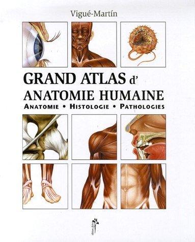 Grand Atlas D'anatomie Humaine : Anatomie, Histologie, Pathologies De Emilio Martín Orte 24 Août 2006 Relié