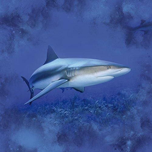 Apple iPhone 5s Housse étui coque protection Prédateur Requin Requin Sac Downflip noir