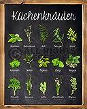 Poster Küchenkräuter - Größe 40 x 50 - Miniposter