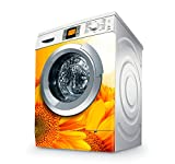 Vinilo Lavadora | Stickers Washing machine| Pegatina Lavadora | Girasol