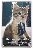 Witziges Katzen Motiv Deko Blechschild