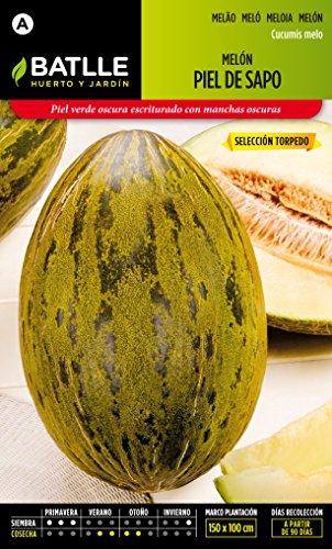 batlle-vegetables-seeds-piel-de-sapo-melon-280-seeds