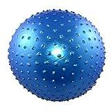 PRECORN Gymnastikball mit Massagenoppen Igelball Noppenball Fitness-Ball Gesundheitsball 55 cm Marke