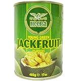 Heera - Young Green Jackfruit in Brine - 482g (pack of 4)