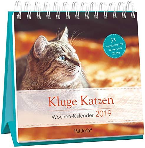 Kluge Katzen - Wochen-Kalender 2019: zum Aufstellen m. Fotos u. Zitaten, inspirierende Texte auf d. Rückseiten, Spiralbindung, 16,6 x 15,8 cm (Tischkalender Katzen)