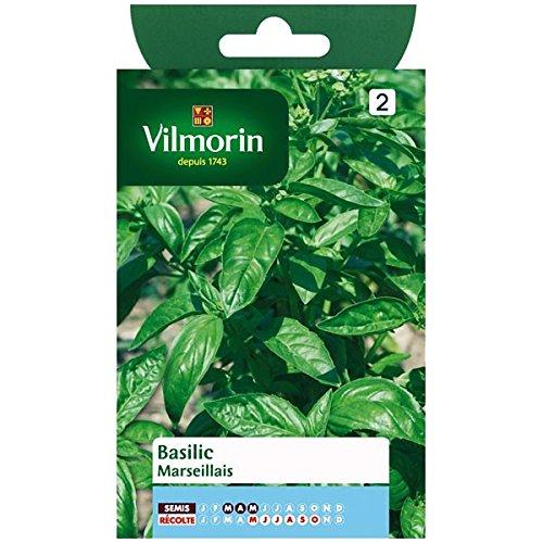 Vilmorin - Sachet graines Basilic marseillais