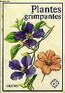 Plantes grimpantes par TYKAC