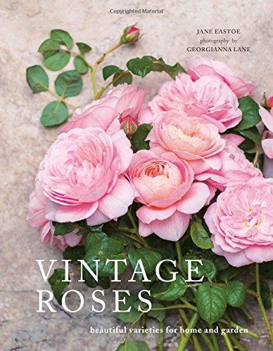 Vintage Roses por Jane Eastoe