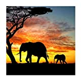 MXJSUA 5D DIY Diamond Painting by Number Kit Fulll Round Dril Beads Crystal Rhinestone Embroidery Cross Stitch Picture Supplies Arts Craft Wall Sticker Decor Elephant in The Desert 12x12In