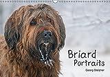 Briard Portraits (Wandkalender 2019 DIN A3 quer): Momentaufnahmen auf Augenhöhe (Geburtstagskalender, 14 Seiten ) (CALVENDO Tiere)