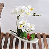 Alicemall Alicemall Flores Artificiales de Orquídeas con Maceta Blanco Bonsái de Phalaenopsis para...