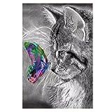 Mikolot Schmetterling und Katze 5D-Diamant-Stickerei, Gemälde, Kreuzstich, Heimdekor, Kunsthandwerk, 30x 40cm