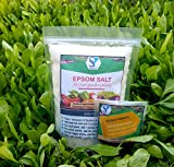 Shiviproducts 900 g Epsom Salt and 10 g Hydrogel Sample