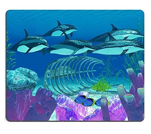 Östrogen Unterstützt (Hochwertige Kreativität Mousepad Gaming-Mauspad Gestreifter Delphin und Wrack Eine Hülse schwimmt über Einem Alten Boot, während DREI schwarz unterstützte Falterfische suchen)