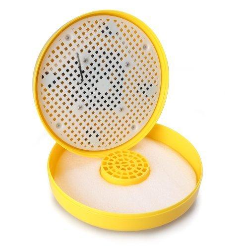 ZJchao Mini Brutei Inkubator für 10 Eier -