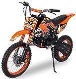 Actionbikes Motors Midi Kinder Jugend Crossbike JC125 125 cc -