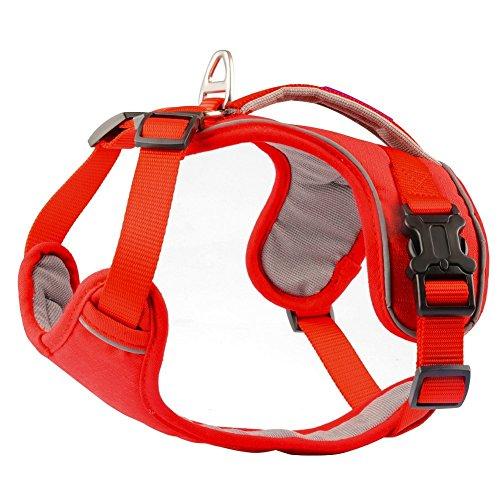 Hundegeschirr, PetLoft weicher Schwamm gepolsterter Hals / Brust umstellbarer Hundegeschirr Hundegeschirr mit Rückhandgriff.
