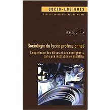 Sociologie du lycée professionnel : L'expérience des élèves et des enseignants dans une institution en mutation