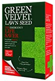 Green Velvet Rasensamen, ideal für Notfälle, 600g