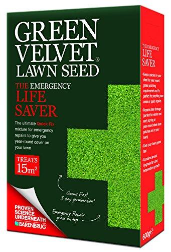 Green Grass Patch (Green Velvet Rasensamen, ideal für Notfälle, 600g)