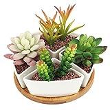 Innoter Vaso in ceramica bianca con vassoio in bambù, ideale per fiori e cactus Pattern 7