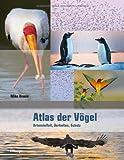 Atlas der Vögel: Artenvielfalt, Verhalten, Schutz - Mike Unwin
