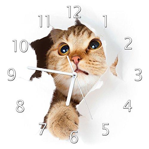 Wallario Glas-Uhr Echtglas Wanduhr Motivuhr • in Premium-Qualität • Größe: 30x30cm • Motiv: Katze mit Blick Nach Oben