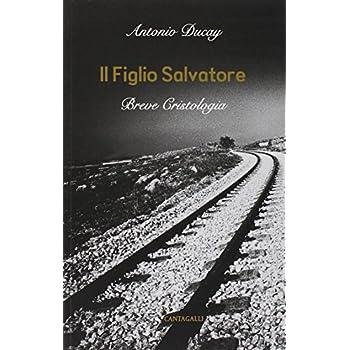 Il Figlio Salvatore. Breve Cristologia
