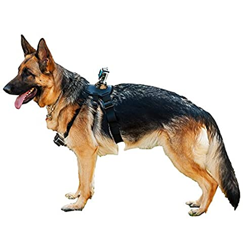 Action Outdoor ® Dog harness for riding sports cameras