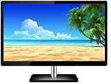 Lappymaster Powereye 1901 LED Backlit LCD Monitor (Black)
