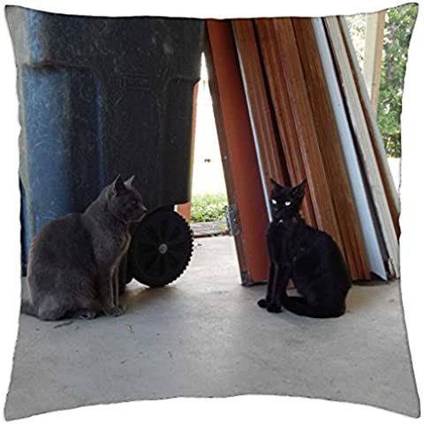 Talking Cats - Throw Pillow Cover Case