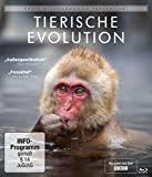David Attenborough: Tierische Evolution [Blu-ray]