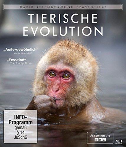 David Attenborough - Tierische Evolution [Blu-ray]