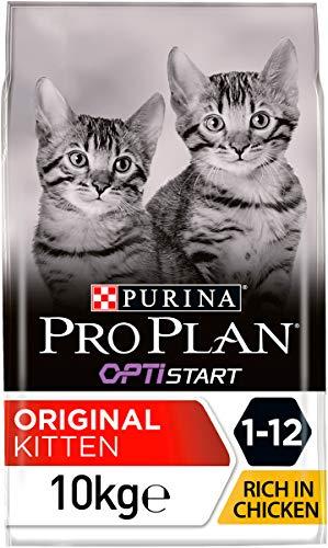 PRO PLAN Junior -  Riche en Poulet - 10 KG - Croquettes pour chaton