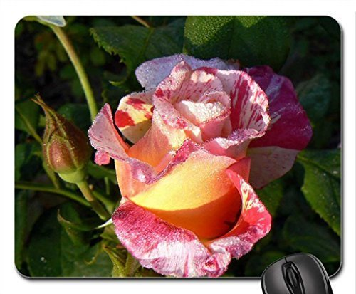 Cabana rose Mouse Pad, Mousepad (Flowers Mouse