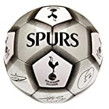Tottenham Hotspur FC Football Team Size 5 Player Signature Ball - Silver