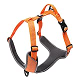 Hunde Laufgeschirre, Raffaelo Sport Hundegeschirr Haustier Hund Weste Verstellbare Hundegeschirre, Outdoor Hundetraining Harness für Hunde für mittlere und große Hunde (Medium of Orange - Neck 38-53; Chest 56-68CM)