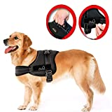 Lifepul(TM) No Pull Dog Vest Harness - Dog Body Padded Vest - Comfort Control for Large Dogs in Training Walking - No More Pulling, Tugging or Choking (M)