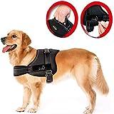 Lifepul Powergeschirr Brustgeschirr für aktive Hunde, Hals- und Schulterbereich weich gepolstert Größe XL, schwarz