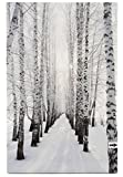 Leinwanddruck Bild Wintermotiv Birkenwald mit LED Beleuchtung 60 x 40 cm