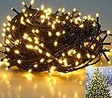 25,7m 360er LED Niedervolt Lichterkette Wasserdichte dekorative Leuchten LED String Licht Wünderschöne Deko für Weihnachten, Hochzeit, Zuhause, Garten, Balkon, Terrasse - Warmweiß