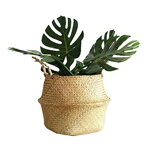 Seegras Korb, WCIC Faltbar Handwerk Weben Bauch Korb Natürlich Seegras Lagerung Oganiser Pot Blume Vase Hängend Korb Mit Griff (Groß Größe 9,64