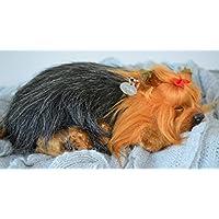 Breathable Yorkie Puppy Companion Haustier für Menschen mit Gedächtnisverlust vom Altern und Pflegepersonal preisvergleich bei billige-tabletten.eu