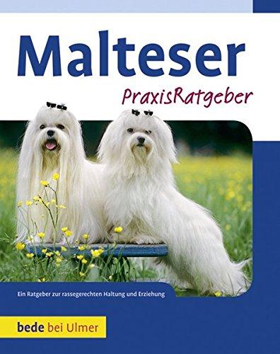 Produktbild bei Amazon - Malteser
