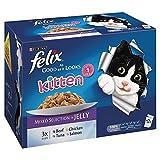 Felix so Gut, Wie es aussieht Kitten Lieblingsauswahl in Gelee bis zu 1 Jahr 12 x 100 g