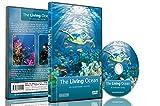 Unterwasser DVD-Der lebende Ozean: Eine Unterwasser-Reise
