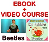 Build Your Self confidence through Art and Activities: Drawing Beetles on pebbles (ebook + Mini Video Course) (Mini Video drawing course - How to Draw on Pebbles 6)