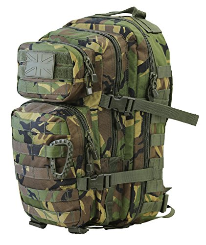 Combat Small Assault 28 ltr Day Pack Back DPM Style Molle Airsoft